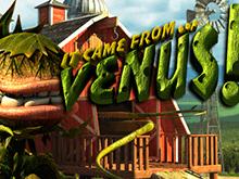 Аппарат It Came From Venus в онлайн-казино Вулкан Делюкс